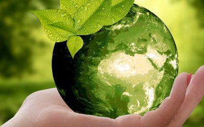 Ekologiczny prezent